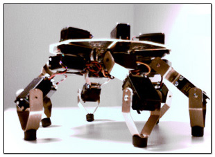 Symapod: 6 legged hexapod walker